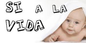 z-vida